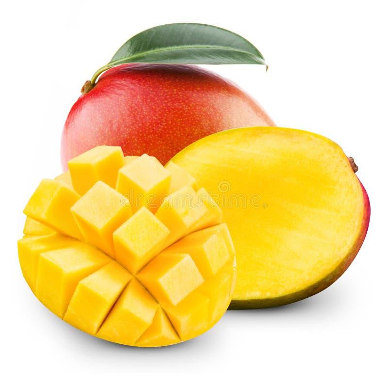 mango arkivfoton