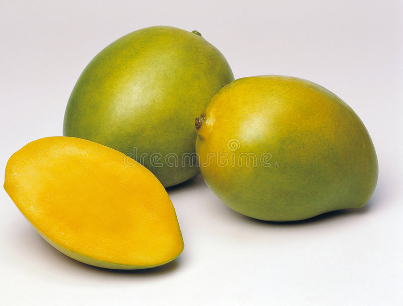 Download Mango Stock Images - Image: 4898494