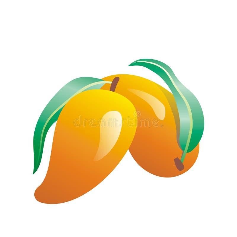 Mango. Vector image of mango on the white background stock illustration