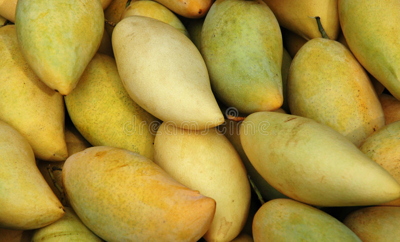 Download Mango stock photo. Image of healthy, fresh, slices, fruits - 89184