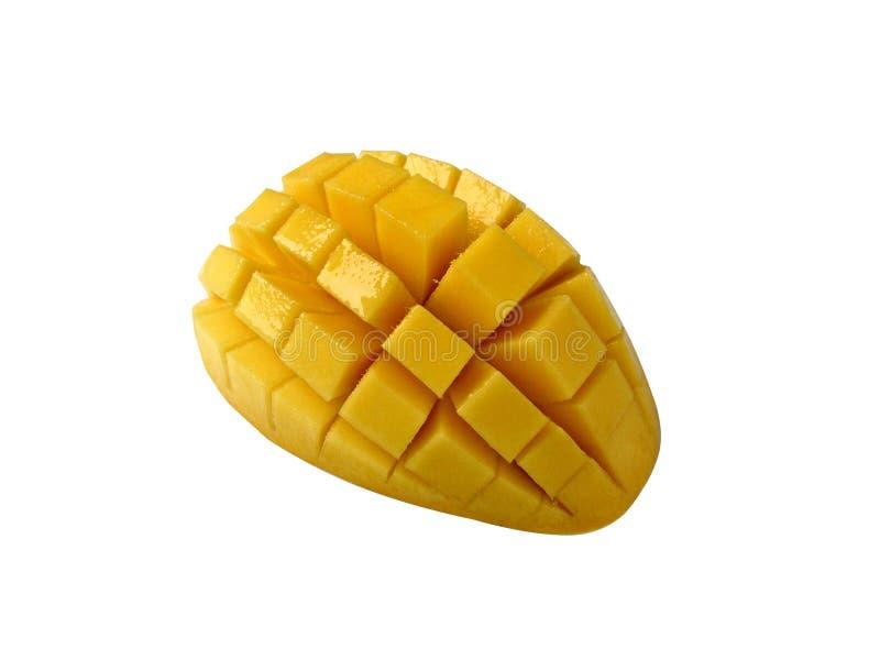 Mango-114-1455 stock afbeeldingen