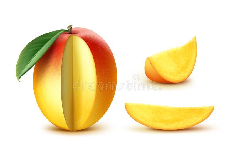 Mango affettato vettore illustrazione vettoriale