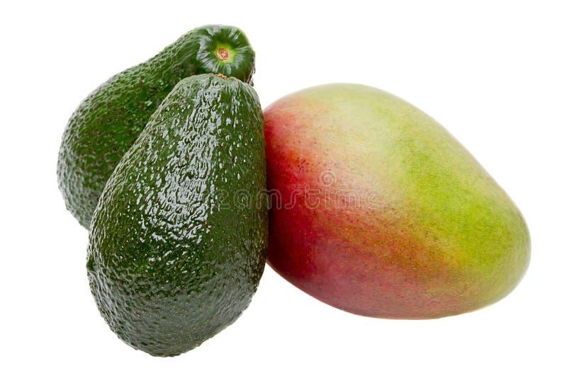 Mango and avocado stock image