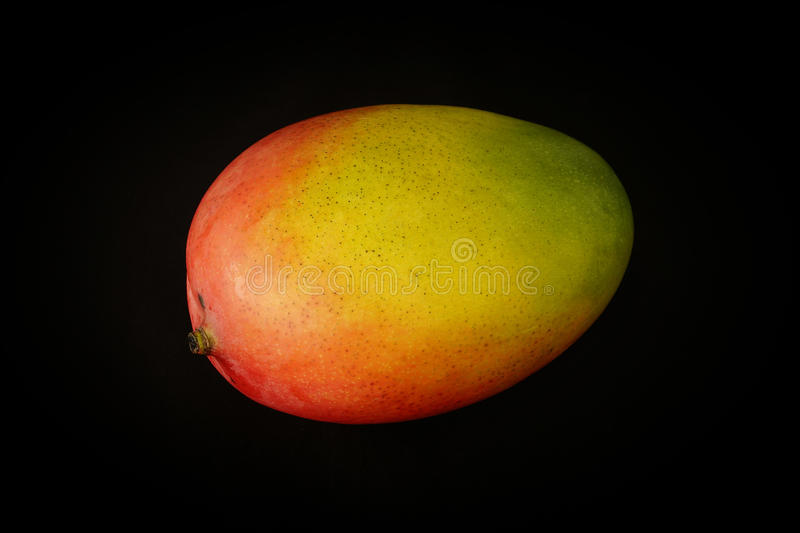 Mango on a black background royalty free stock photos