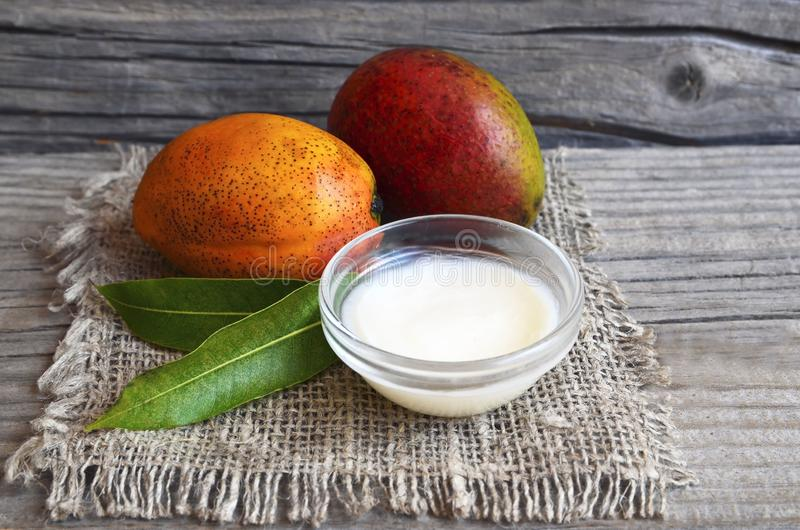 Mango body butter in a glass bowl and fresh ripe mangoes on old wooden table.Spa,organic cosmetic or healthcare concept. Selective stock photography