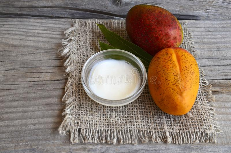 Mango body butter in a glass bowl and fresh ripe mangoes on old wooden table.Spa,organic cosmetic or healthcare concept. Selective royalty free stock image