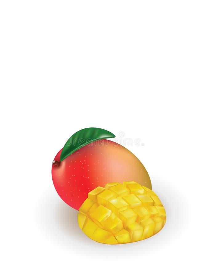 Mango con la fetta del mango illustrazione di stock