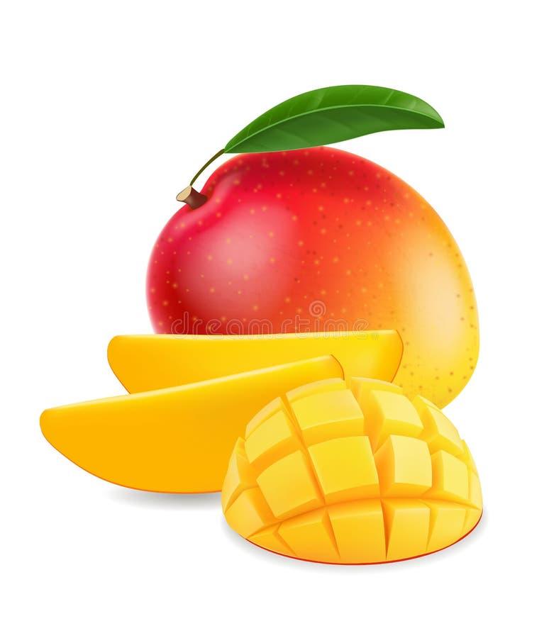Mango della frutta con l'illustrazione realistica della fetta del mango illustrazione vettoriale