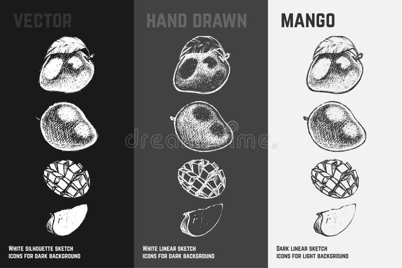 Mango dibujado mano Sistema del vector del bosquejo de las frutas stock de ilustración