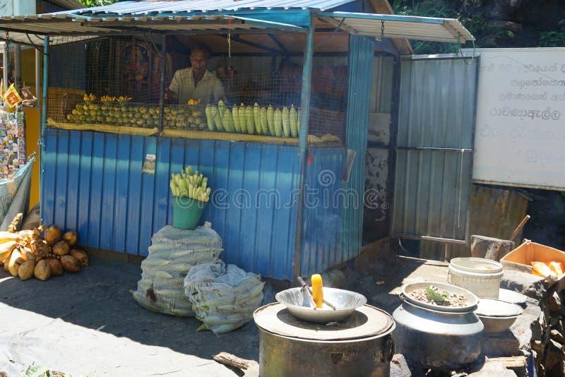 Mango en graan over waterval royalty-vrije stock fotografie