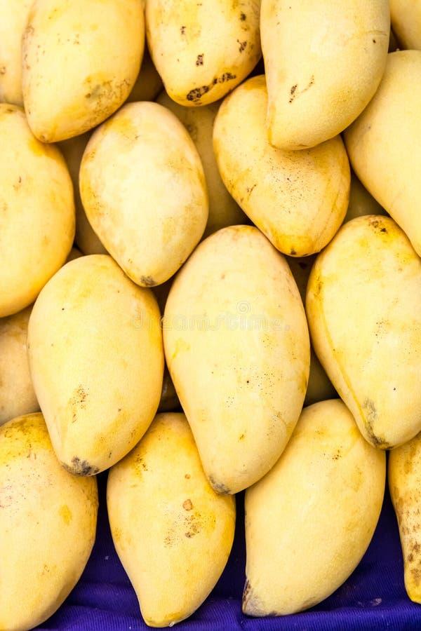 Mango, exotisch fruit royalty-vrije stock afbeeldingen