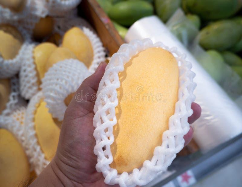 Mango fresco en una parada del mercado, mango de la selección a mano, cierre encima del focusl fotografía de archivo