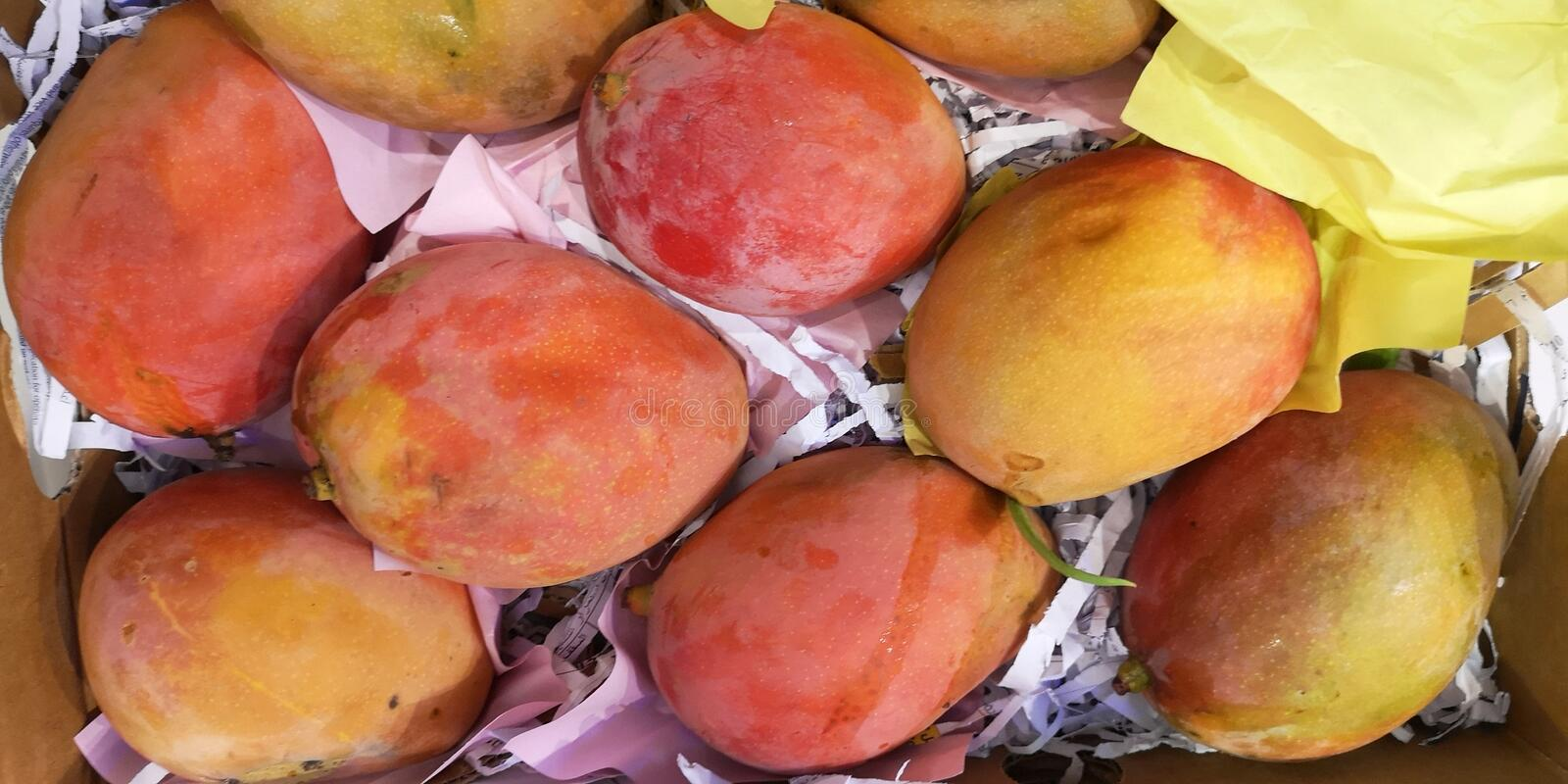 Mango fresh love to eat  this kind of looks sweet stock photo