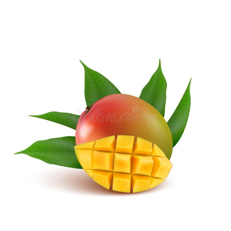 Mango fruit for fresh juice, jam, yogurt, pulp. 3d realistic yellow, green, red, orange ripe mango cubes and leaves isolated on w. Hite background for packaging royalty free illustration