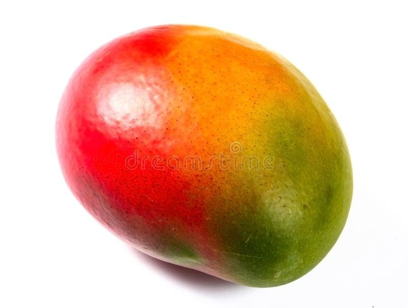 Mango fruit isolated royalty free stock images
