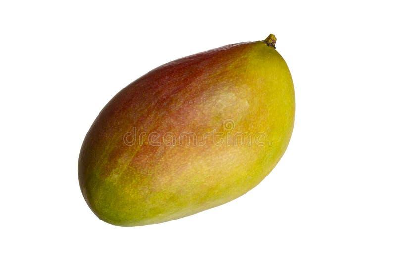 Mango fruit isolated on white background. Ripe whole juicy mango. With peel stock image