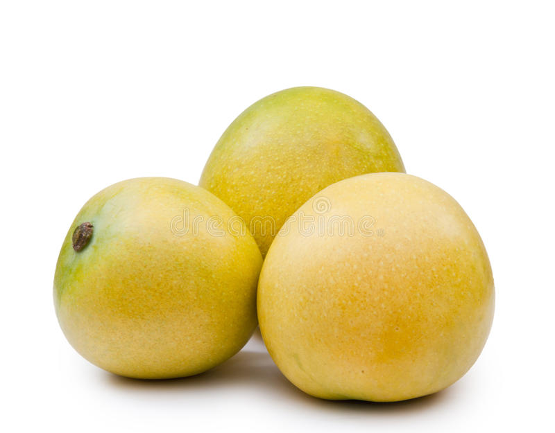 Mango Fruits Royalty Free Stock Photo