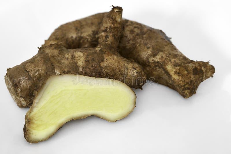 Mango-Ginger rizoma inteiro e fatiado em branco imagens de stock