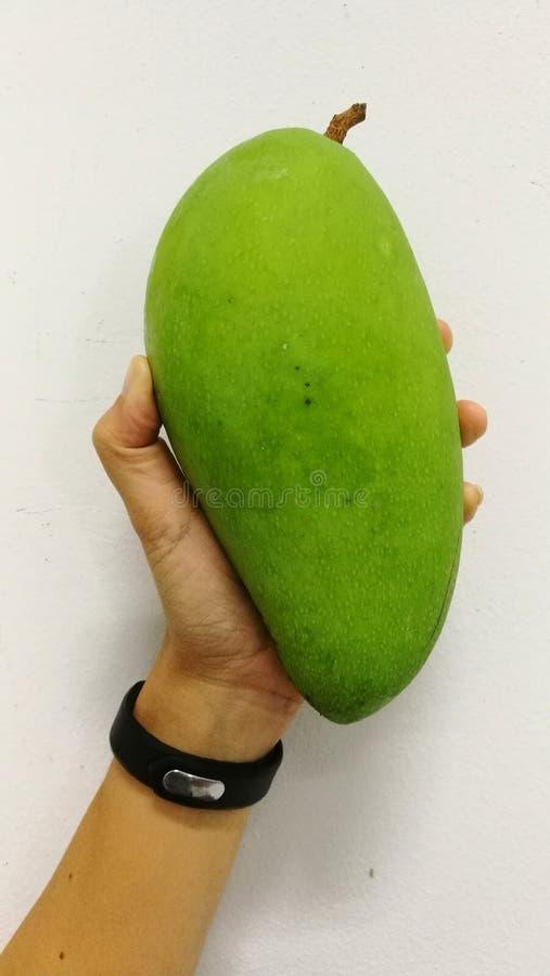 Mango grande de las frutas de Tailandia fotografía de archivo