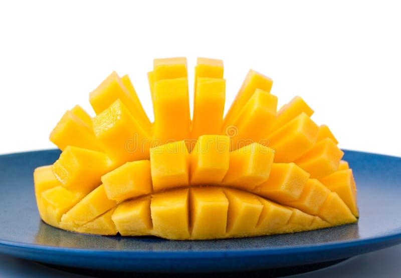 Mango hedgehog cut stock photo image 67858635 download mango hedgehog cut stock photo image 67858635 ccuart Choice Image