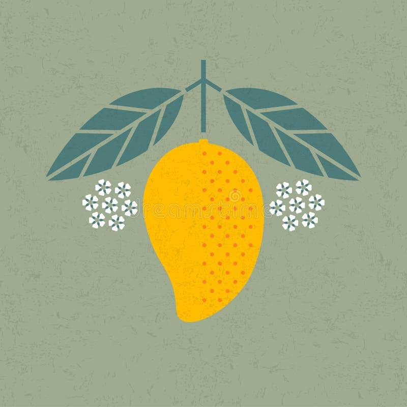 Mango illustration. Mango with leaves and flowers on shabby background. Flat design. vector illustration
