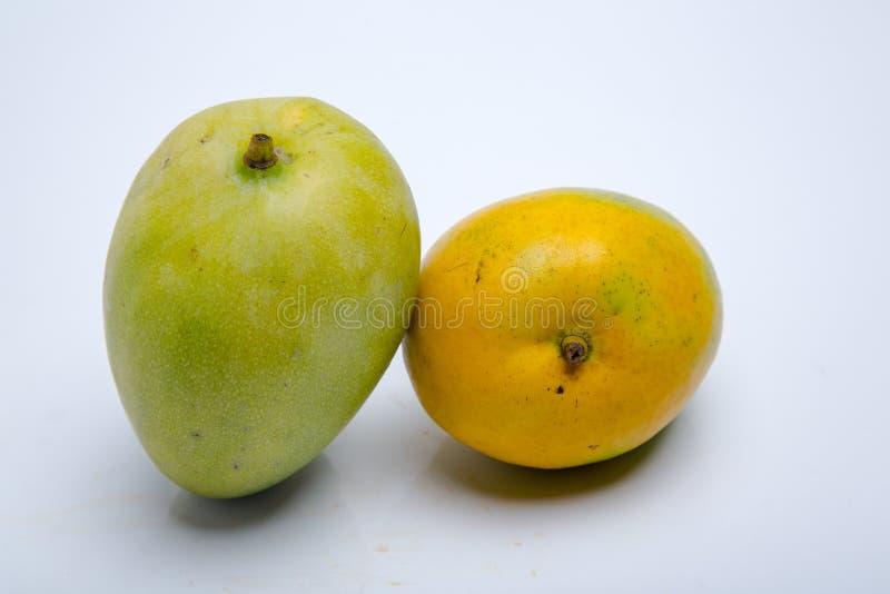 MANGO JEST TROPIKALNYM owoc zdjęcie royalty free