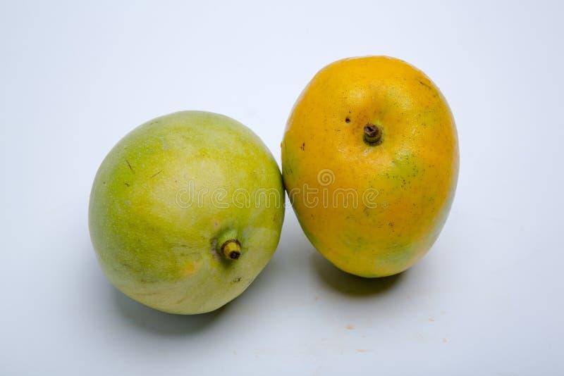 MANGO JEST TROPIKALNYM owoc obraz stock