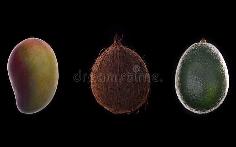 Mango-, kokosnöt- och avokadofrukter över svart royaltyfria bilder