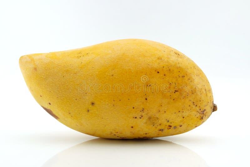Mango maduro aislado con en el fondo blanco fotografía de archivo