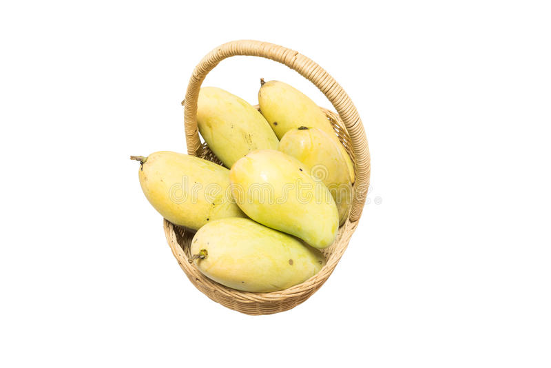 Mango in mand royalty-vrije stock foto
