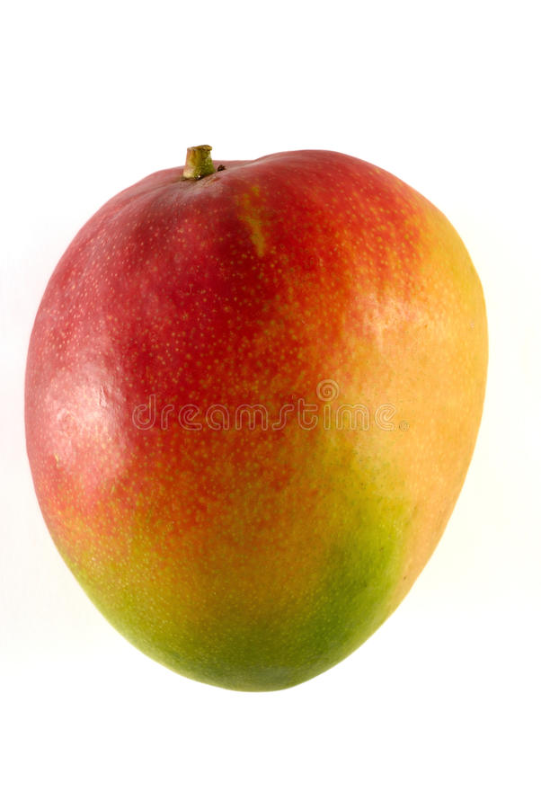 Mango på den vita zonen arkivbild