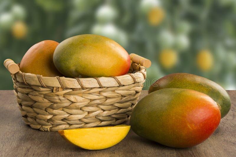 Mango på en wood bakgrund royaltyfria bilder
