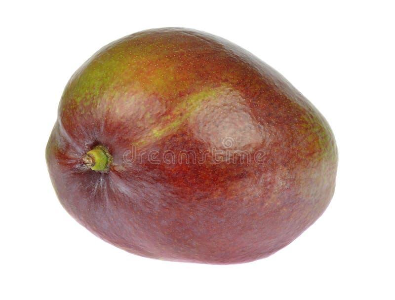 mango Pojedyncza słodka dojrzała owoc odizolowywająca na białym tle zdjęcie royalty free