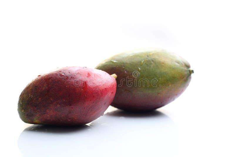 mango Rijp, exotisch, tropisch mangofruit op een witte achtergrond stock fotografie
