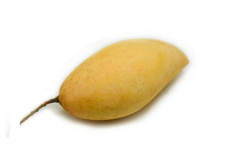 Mango rip. In basket isolated on white stock photography