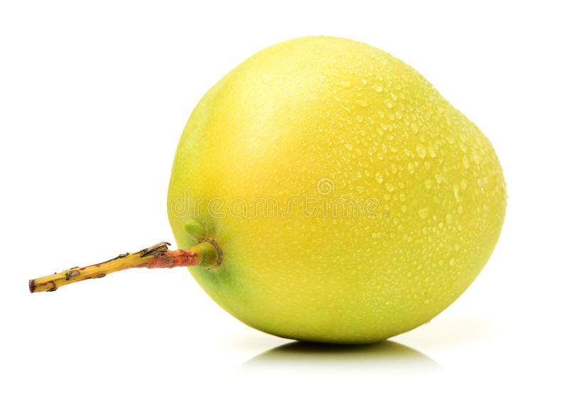 Mango rip. Isolated on white background royalty free stock images