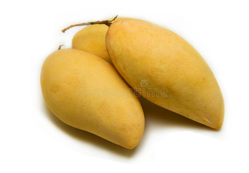 Mango rip. In basket isolated on white royalty free stock photos