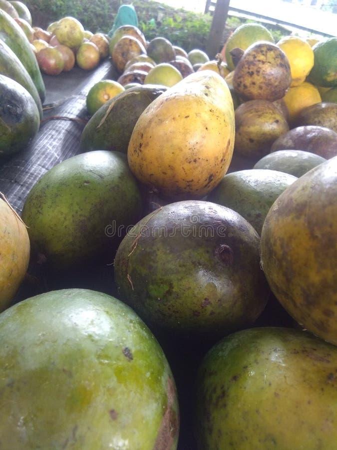 Mango& x27;s & x28;karthakolmbam& x29; Traditionele Indiase mango royalty-vrije stock fotografie