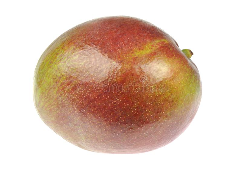 Mango. Single sweet ripe fruit isolated on white background.  stock photo