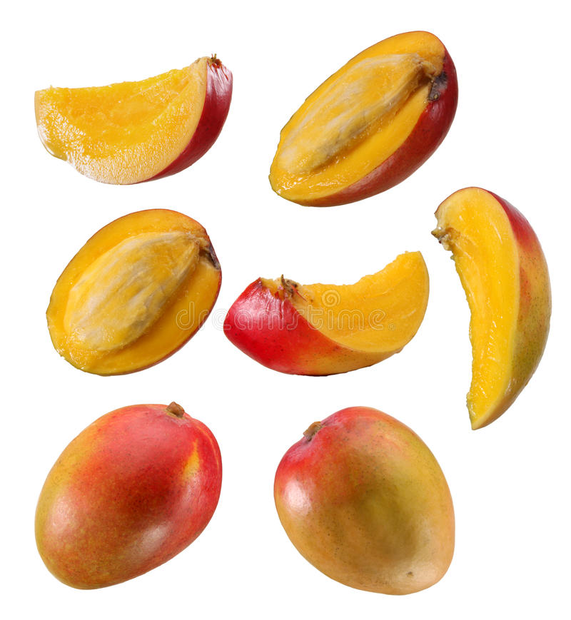 Mango and slices stock images