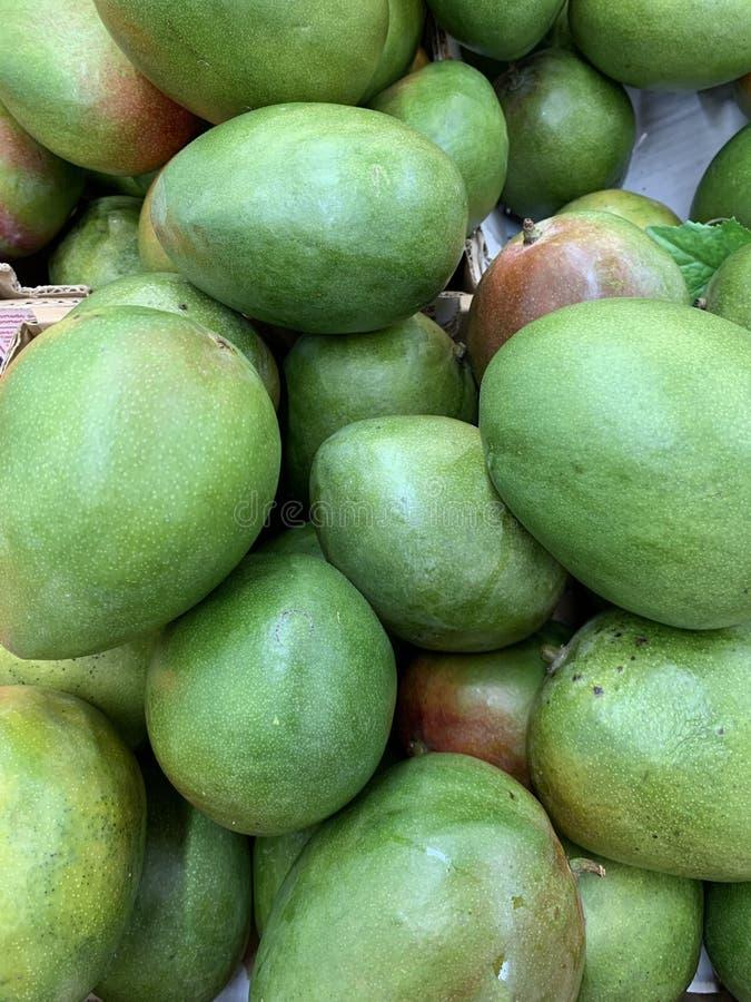 Mango som rygg arkivfoto