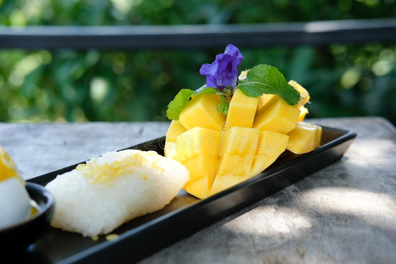 Mango sticky rice coconut milk. traditional Thai dessert royalty free stock photos