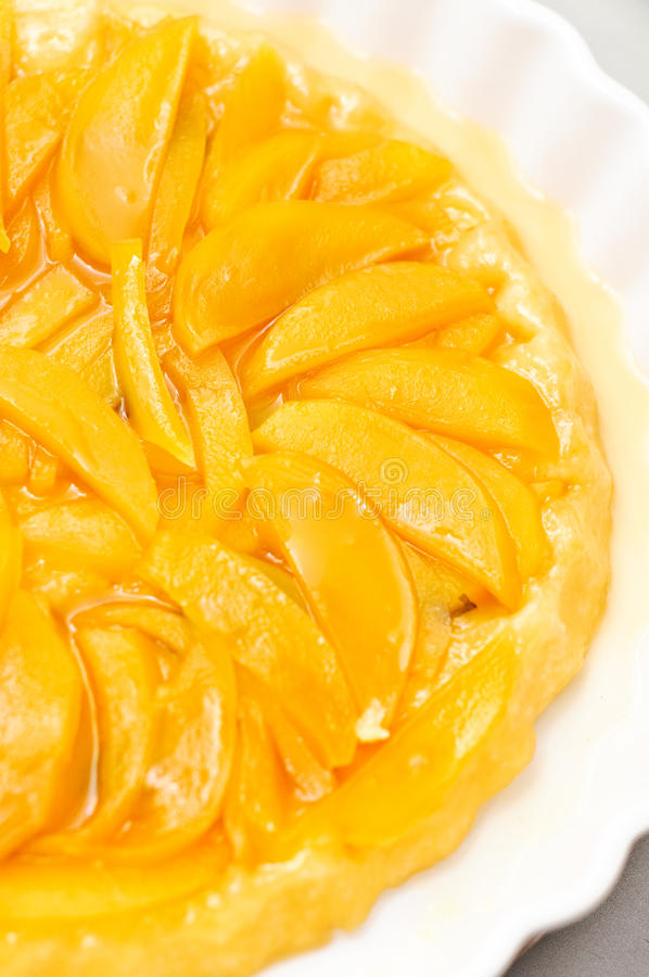 Download Mango Tatin Stock Photos - Image: 21528703