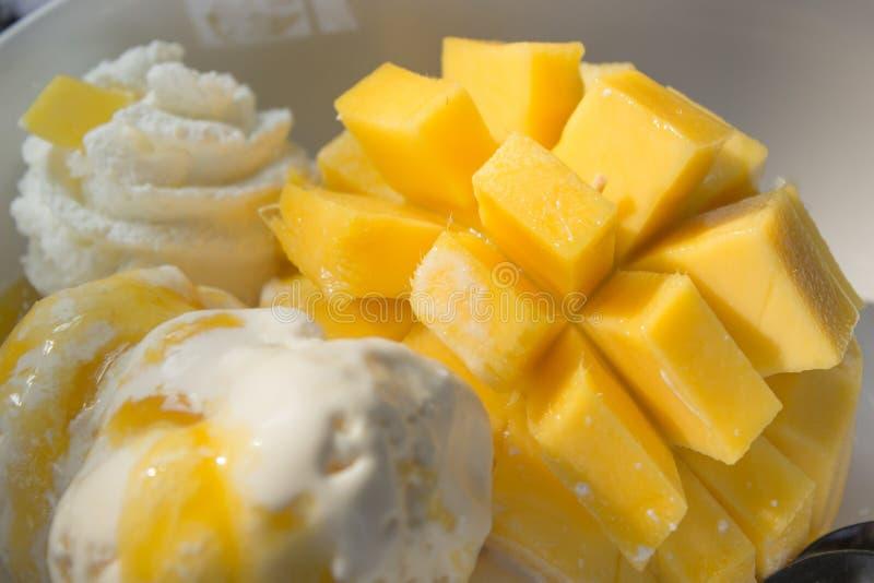 Mango and vanilla ice cream royalty free stock photos