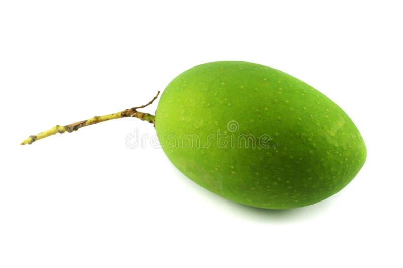 Mango verde imagen de archivo libre de regalías