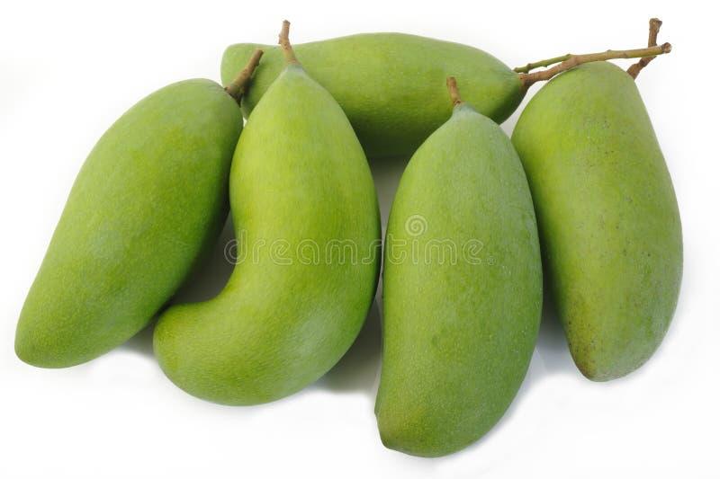 Mango verde fresco fotografia stock