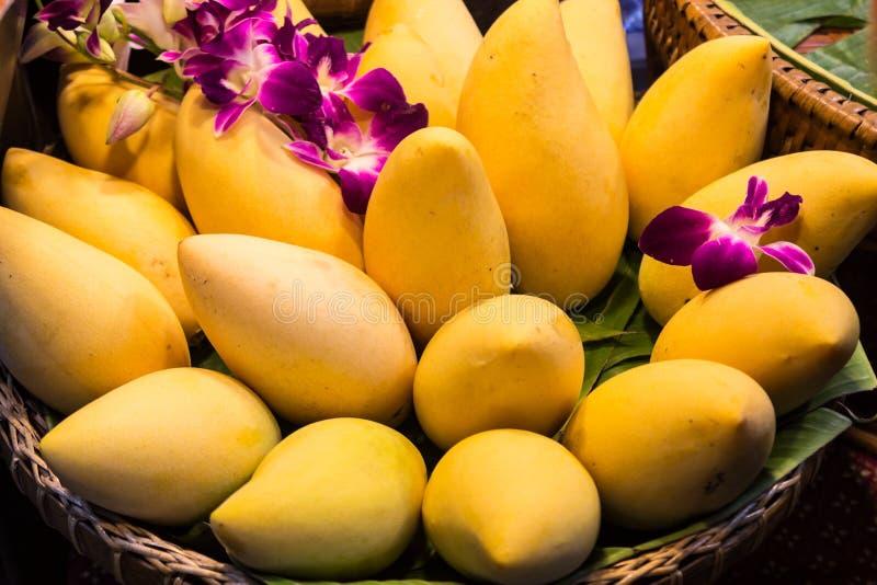 Mango w koszu. zdjęcia royalty free