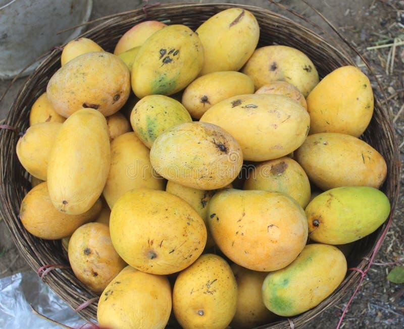 Mango w koszu fotografia stock
