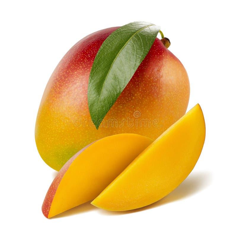 Mangobladet skivar länge isolerat på vit bakgrund arkivbild