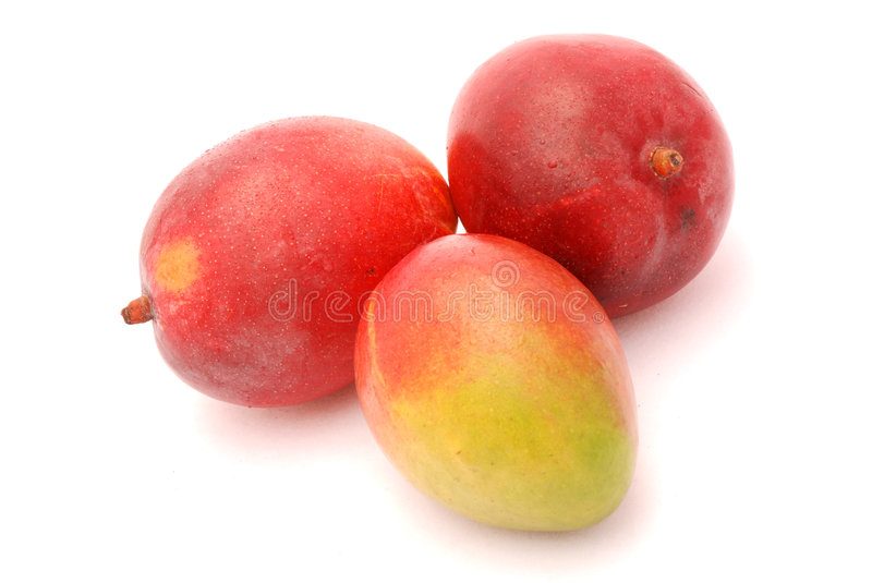 Download Mangoes Royalty Free Stock Images - Image: 4192569